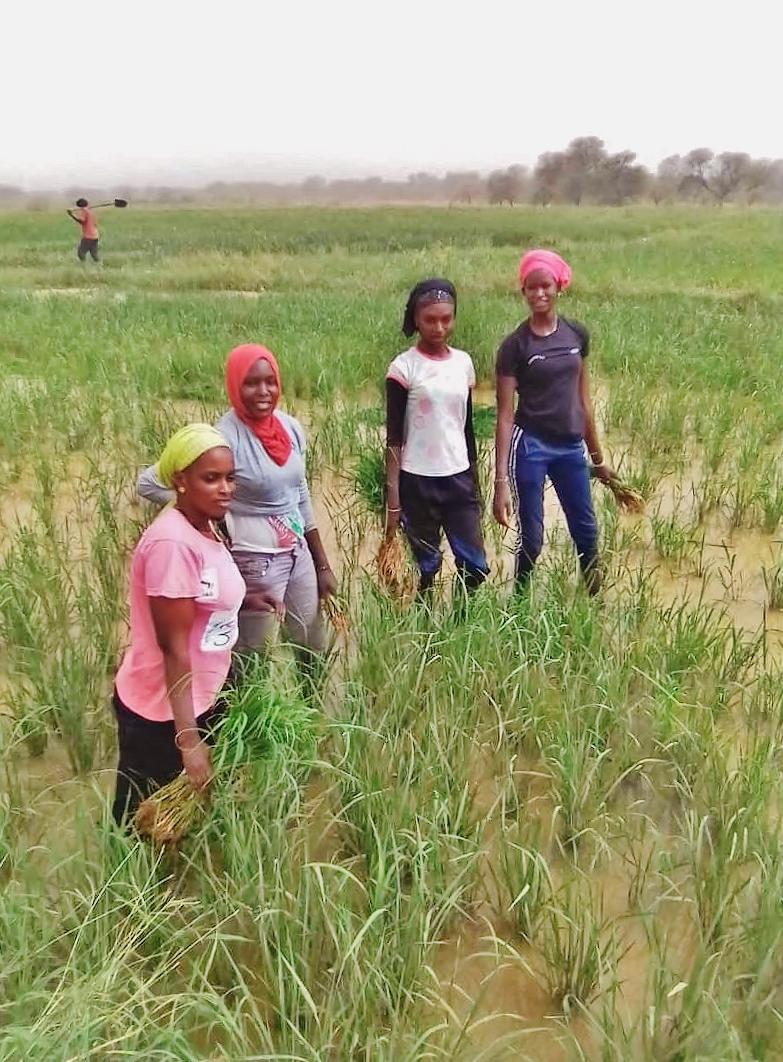 Empoderamiento de las mujeres y producción sostenible para acabar con la desnutrición