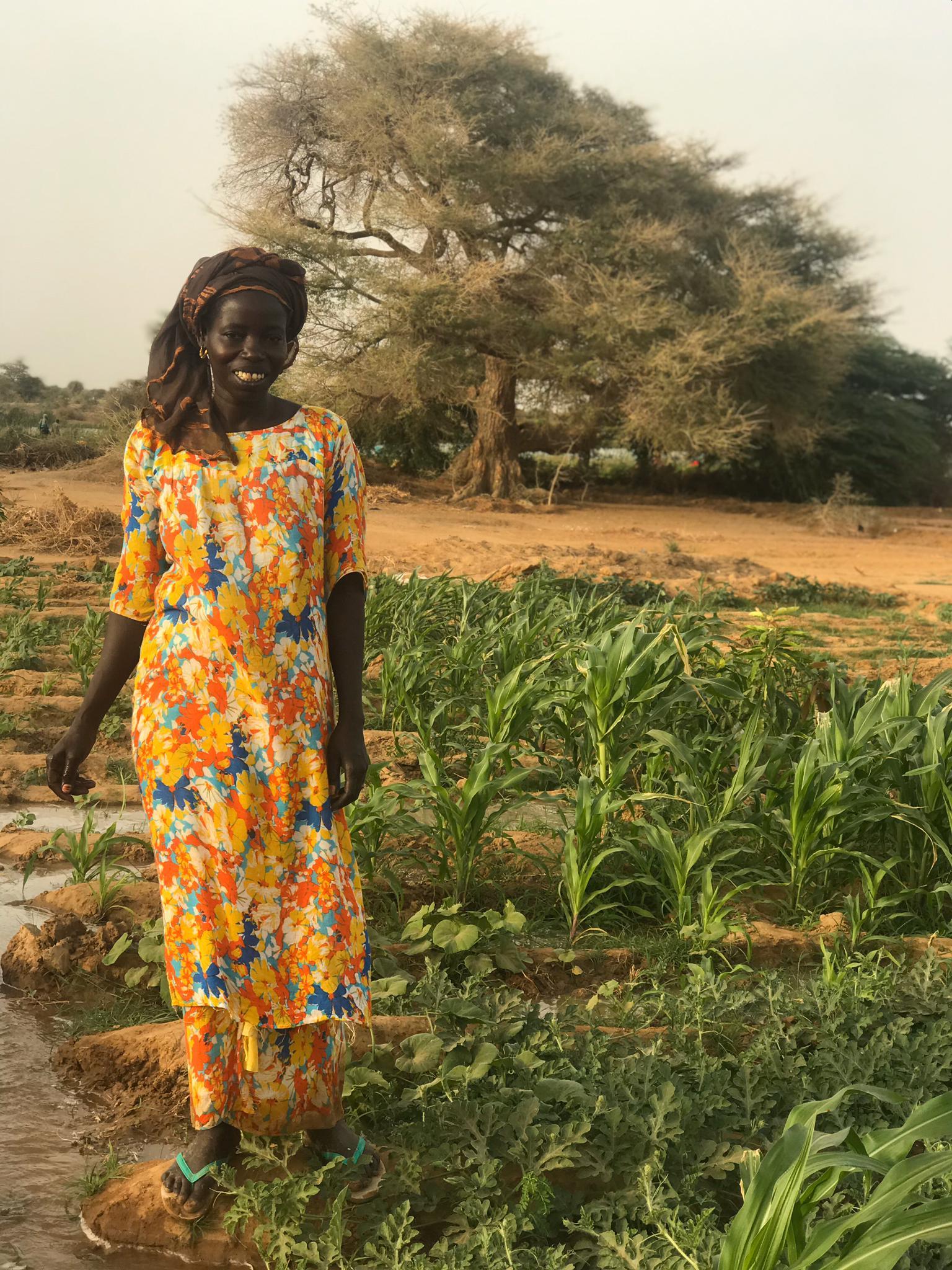 Resistencia ante la crisis nutricional y sanitaria en Fanaye