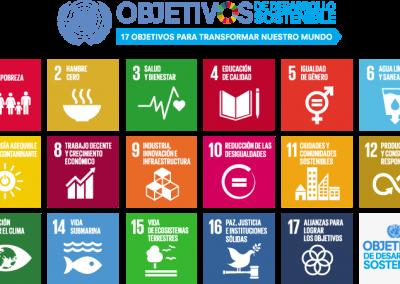 Educando en los ODS en Calatayud
