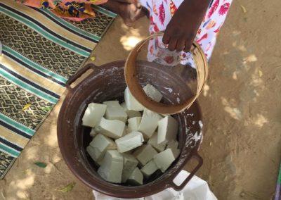 Producción agropecuaria y mejora de la salud (FASE II)